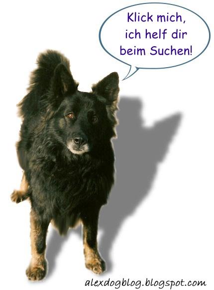 Hundeinfos suchen & finden!